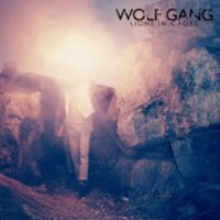 Wolf Gang: Single: Lions In Cages