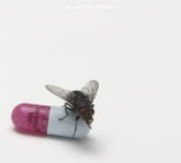 Red Hot Chili Peppers: Single: Monarchy of Roses